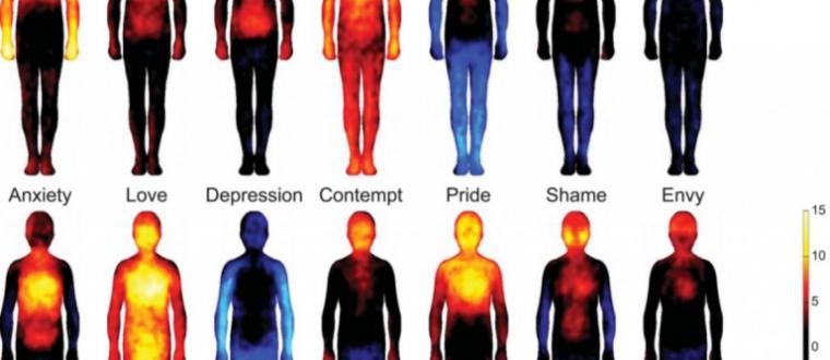 פיזור הדם שלנו משתנה לפי הרגשות.